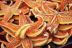 Close-up van een stervis die verkocht wordt op de Chinese markt. Deze foto komt uit Dangerous Enc... [FOTO VAN DE DAG - september 2012]