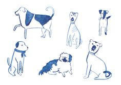 Posh Dogs by Kate Cronk