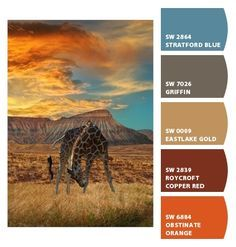african color schemes - Google Search