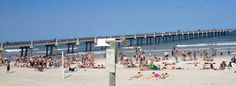 Things to do in Jacksonville Florida Jacksonville has earned its name for being the best food destination in Florida. A perfect place for the food lovers to explore the delicacies at the ...  #BestThingstodoinJacksonvilleflorida #FreeThingstodoinJacksonvilleflorida #FunThingstodoinJacksonvilleflorida #JacksonvillefloridaAttractions #PlacestoVisitinJacksonvilleflorida...