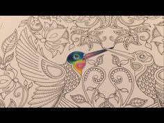 Coloring Tutorial: The Hummingbird (Part 1/5) - YouTube
