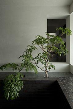 FORM / Kouichi Kimura Architects | Silence House