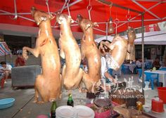 10 Ways to Eat Your Dog in China