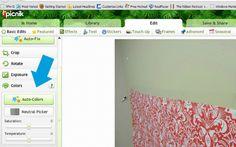 Fabric Backdrop | The Ribbon Retreat Blog
