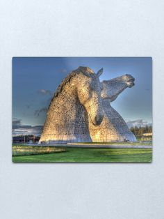 """The Kelpies, Helix Park , Falkirk"" Metal Print by goldyart Round Corner, Print Design, David, Park, Wall Art, Metal, Artist, Artwork, Prints"
