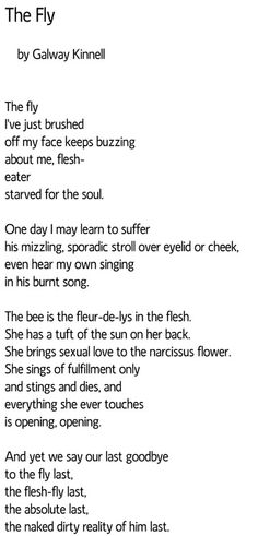 'The Fly' by Galway Kinnell....& bees