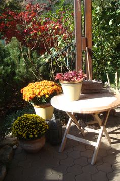 Patio, Lawn And Garden, Seasons Of The Year, Autumn