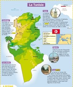 Fiche exposés : La Tunisie Ap French, French Words, Learn French, French Teaching Resources, Teaching French, Infographic Creator, Pays Francophone, Medical Mnemonics, Geography Map