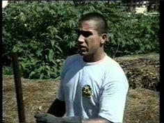 Programa Globo Rural sobre Compostagem gravado em agosto de 2003 na UFSC