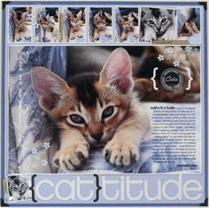 {cat}titude ~ showcase kitty with a great photo enlargement, a witty definition and a film strip of pics...so cute!