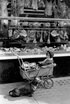 Henri Cartier-Bresson GB. London. 1958. I find this image very comical. The first question is, where is the mother? Assuming she is inside the store, is the dog suppose to be guarding the girl. It looks as though the dog has eaten too many of whats inside the store. Typically we place our babies in prams, perhaps the dog should be in the pram.