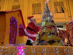 Celebración en Guayaquil #Guayaquil #Travel #AllYouNeedIsEcuador #BestPlace #holidays #celebrations #megustaviajar #viajarporEcuador #igersoftheday #loveGuayaquil #travelinstyle #thatsdarling #igersecuador #VivaGuayaquil #colors