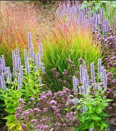Color Tips. Mix grasses with foliage and flowers in a variety of colors, textures and shapes for high-impact landscape design.