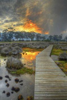 Wooden trail at Knysna Lagoon, South Africa