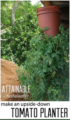 Short on space for a vegetable garden? Consider growing UP. Or down? This hanging tomato planter is simple to make, inexpensive, and allows you to take advantage of unused space. Garden ~ prepping ~ homestead ~ grow your own ~ seeds ~ vegetables