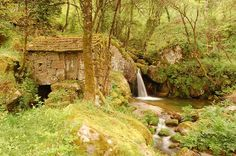 Watermill in Cinfães, Viseu. (Photo: Oscar Sánchez Requena)