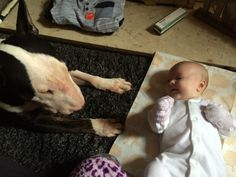 Bully and my baby