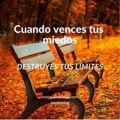 www.anavidas.com Life