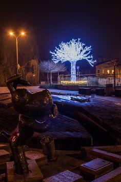 fot. Dawid Zawiła #tree #lights