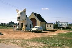 Spottie's Roadhouse, Retreat, Cape Town, Vintage Pictures, Old Pictures, Old Photos, Spotty Dog, Vernacular Architecture, Cape Town South Africa, Countries Of The World, Vintage Photographs, Sunset