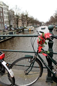 Amsterdam: bikes, flowers, and canals