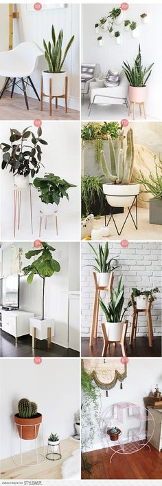 » DIY or BUY | Plant Stands na Stylowi.pl