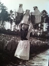 Resultado de imagen de leiteira en 1910