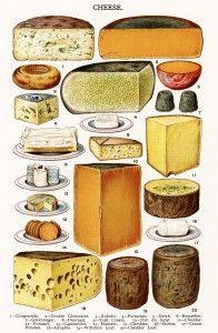 Old Design Shop ~ free digital image: Mrs. Beeton's vintage Cheese page