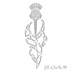 TATTOO TRIBES: Tattoo of Thistle, Scotland, protection tattoo,thistle cardus waves spearheads tattoo - royaty-free tribal tattoos with meaning Scottish Symbols, Celtic Symbols, Celtic Art, Scottish Gaelic, Scottish Clans, Cross Stitch Embroidery, Embroidery Patterns, Scottish Thistle Tattoo, Zentangle