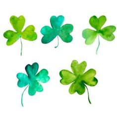 What's the Difference Between Shamrock and Four-Leaf Clover? What's the Difference Between Shamrock Clover Plant, Four Leaf Clover, Clover Tattoos, Leaf Tattoos, Trees To Plant, Plant Leaves, Baby Tattoos, Tatoos, Four Leaves