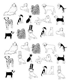 homepage by Hanna Melin Children's Book Illustration, Character Illustration, Animal Line Drawings, Black And White Dog, Dog Wallpaper, Doodle Drawings, Dog Art, Cute Art, Painting & Drawing