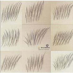 Hair For Eyebrows Eyebrows Sketch, Mircoblading Eyebrows, Tweezing Eyebrows, How To Draw Eyebrows, Permanent Makeup Eyebrows, Threading Eyebrows, Eyebrow Makeup, Eyebrow Tips, Eyebrow Brush
