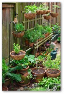 Grow Vertical Vege Garden