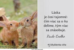 Láska je čosi tajomné: čím viac sa o ňu delíme, tým viac sa znásobuje.Paulo Coelho
