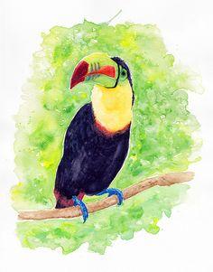 Toucan #AnimalArt #Art #Toucan