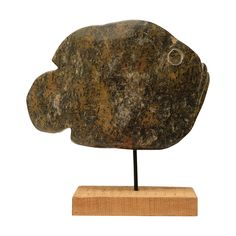 Cameroon Stone Fish