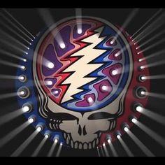 Stealie Grateful Dead Shows, Grateful Dead Skull, Grateful Dead Image, Grateful Dead Poster, Grateful Dead Bears, Grateful Dead Wallpaper, Phil Lesh And Friends, The Dead Zone, Jerry Garcia Band