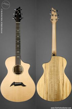 Breedlove Voice Series Concert at The Perfect Guitar
