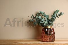 Beautiful eucalyptus branches in glass vase on wooden table against beige background. Space for text. Buy Creativity & Imagination. Take a look at what the world's best photographers have to offer at africa-images.com Eucalyptus Branches, Beige Background, Best Photographers, Wooden Tables, Imagination, Glass Vase, Creativity, Africa, Stock Photos