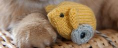 Cat Toy Mouse Knitting Pattern