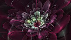 Download 1920x1080 Full HD 1080p 1080i flower, burst, background, fractal Wallpaper Widescreen WallpapeprsCraft