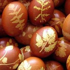 Barvení vajíček cibulí