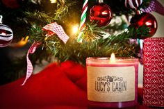 Mulled Cider Soy Candle  10 oz. by LucysCabin on Etsy, $10.00