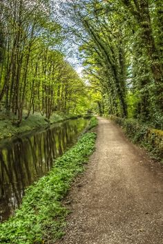 canal walk at Whatstandwell Narrowboat, Houseboats, Peak District, Derbyshire, Pathways, Countryside, Around The Worlds, Country Roads, Spaces