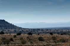 Layers of The Mountain Zebra National Park Layers of The Mountain Zebra National Park is a national park in the Eastern Cape province of South Africa proclaimed in July 1937 for the purpose of providing a nature reserve for the endangered Cape mountain zebra.