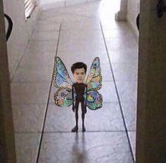 Harry Styles Fotos, Harry Styles Memes, Harry Styles Cute, Harry Styles Pictures, Harry Edward Styles, One Direction Harry, One Direction Humor, One Direction Pictures, Desenho Harry Styles