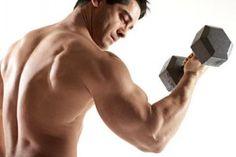 Arm Exercises For Men - SimpleDailyHealth.com