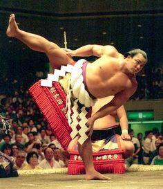 Chiyonofujisan wa Ichi-ban desu.