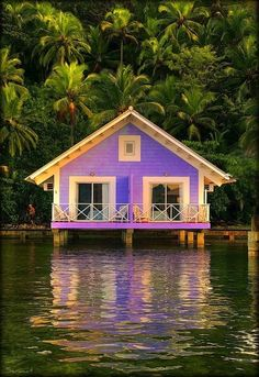Beach Cottage, Brazil - this is a GREAT purple home, or at least a purple vacation home! Purple Home, Purple Beach, Green Beach, Beautiful Homes, Beautiful Places, Haus Am See, Water House, Beach Cottages, Little Houses