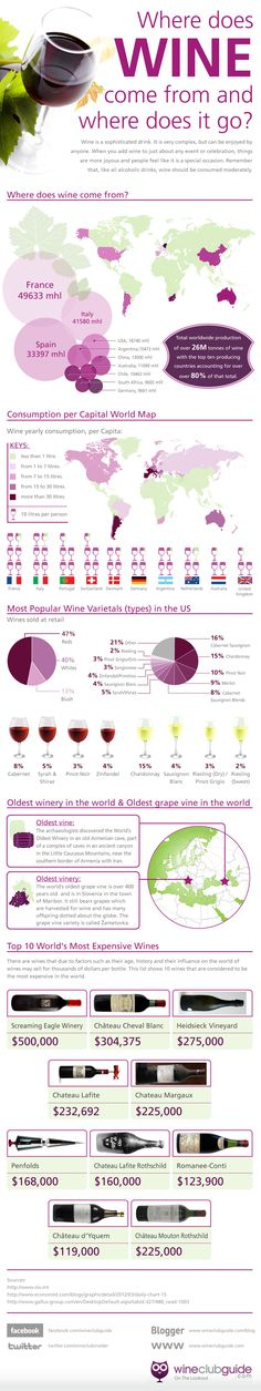 Infographics - Where Does Wine Come From And Where Does it Go?